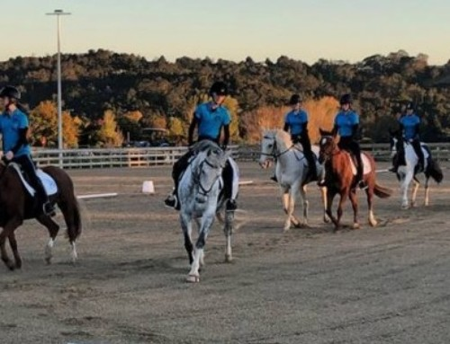 Young Riders Embrace New Facility – Wainoni Park Pony Club Project Update